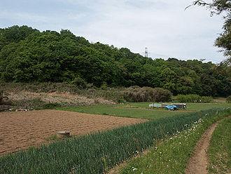 Satoyama - Satoyama landscape in Inagi, Tokyo