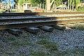 J30 619 Schottermangel durch Trampelpfad.jpg