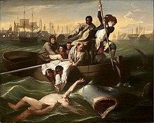 watson and the shark