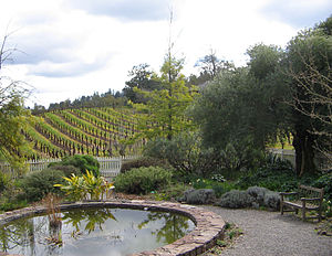 Jack London State Historic Park - The garden as seen from the cottage porch