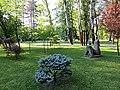 Japanski vrt - panoramio (1).jpg