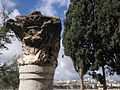 Jerusalem 2013 Mt of Olives.JPG