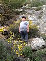 Jerusalem Forest IMG 4986.jpg