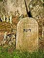 Jewish cemetery Otwock Karczew Anielin IMGP6718.jpg