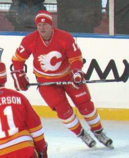 Jiří Hrdina Czech ice hockey player