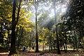 Kebun Raya Bogor.jpg