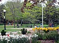 Kitchener Victoria Park Parc Victoria, Kitchener (20519976731).jpg