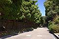 Kobe Suma Rikyu Park30n4592.jpg