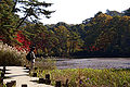 Kobe municipal forest botanical garden13s3872.jpg