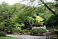 Koishikawa Korakuen - Bunkyō-ku, Tokyo, Japan - DSC09180.JPG