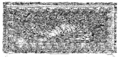 Koldewey-Sicilien-vol2-table19.png
