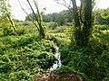 Konotopka River - 04.jpg