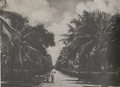 Koror Scenery, Palau (from a book published in 1935).png