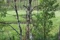 Krievupe, Garkalnes pagasts, Garkalnes novads, Latvia - panoramio (1).jpg