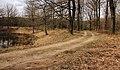 Kroondomein, pad langs Koningskuil naar Wieselseweg.JPG