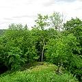 Krusta kalns - pilskalns 02.jpg