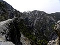 Kuş yuvası - panoramio (1).jpg