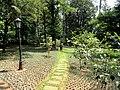Kunming Botanical Garden - DSC02915.JPG