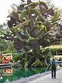 L'arbre aux oiseaux Vue du nord-est - Montréal (Canada).JPG
