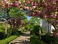 La Promenade Plantée, April 2015 004.jpg