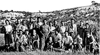 Royal Air Force Special Duties Service - Jean Garcin and some of his maquis resistance fighters in 1944