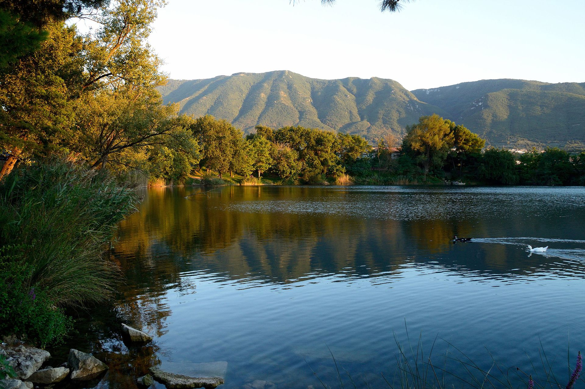 Lago di telese wikipedia for Lago n