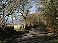 Lane on Tregeare Down - geograph.org.uk - 713843.jpg