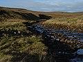 Langdon Beck - geograph.org.uk - 298604.jpg