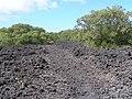 Lava, Rangitoto Island - panoramio.jpg