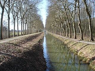 Blancafort, Cher Commune in Centre-Val de Loire, France