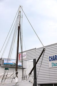 Le sloop ostréicole Petit Normandie (8).JPG