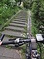 Lent (Nijmegen) stenen Waalbrugtrap met fietsgeul.JPG
