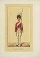 Les Régiments suisses et grisons au service de la France, BNF, PETFOL-OA-467 f18.png