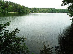 Lichwinskie Lake (2).jpg