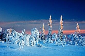 Lierne - Winter in Lierne