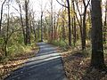 Loantaka Way NJ bike trail through woods early autumn.JPG