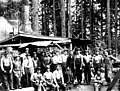 Logging crew with donkey engine, Snohomish County, ca 1913 (PICKETT 267).jpeg