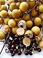 Longgan fruit wt seeds.jpg