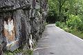Losone Strada dei Polacchi 110615 1.jpg