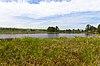 Lost Creek Bog.jpg
