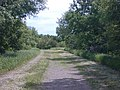 Luce Line Bike-Walk Trail, Cedar Mills to Hutchinson, MN - panoramio (5).jpg