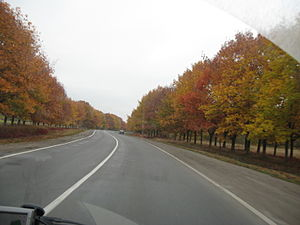 Highway M12 (Ukraine) - Image: M12 in oblast