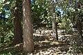 MADRID PARQUE de MADRID COLINA ARTIFICIAL VIEW Ð 6K - panoramio (13).jpg