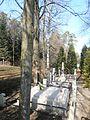 MARCINKOWICE cmentarz 352 (3).JPG