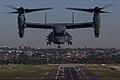 MV-22B Osprey flies over Sydney Harbour 16.jpg