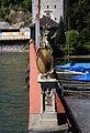 Mainau - Insel - Wappen & Schilder 002.jpg