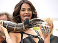 Mallika Sherawat at Hisss Photo Call.jpg
