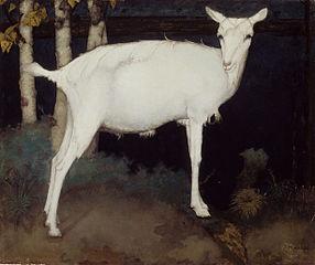 Jonge witte geit