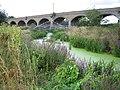 Mar Dyke, Railway viaduct and footbridge - geograph.org.uk - 226097.jpg