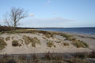 Marielyst - Image: Marielyst beach dunes